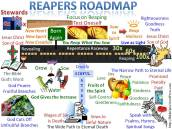 Reapers Roadmap Focus on Reaping