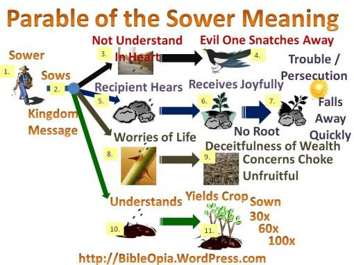 The Parable of the Sower Explained Mind Map Assessment