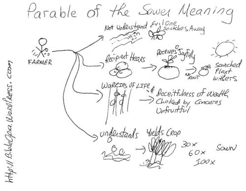 Parable of the Sower Meaning Hand Drawn