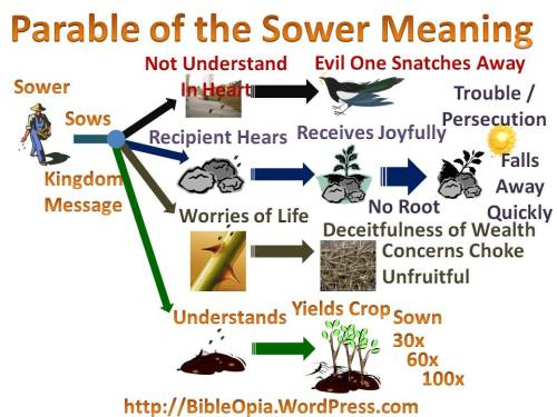 The Parable of the Sower Explained Mind Map