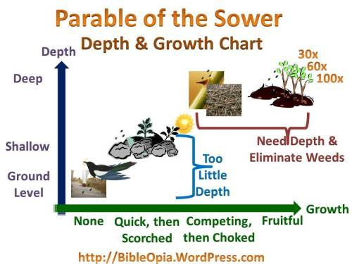Parable of the Sower Initial Depth and Growth Chart